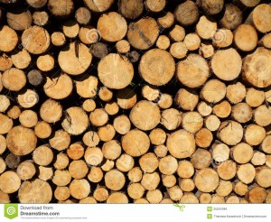 http://www.dreamstime.com/royalty-free-stock-images-wood-pile-image25251699